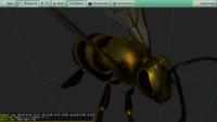 Bee_0